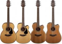 Picture for category Acoustic Guitars